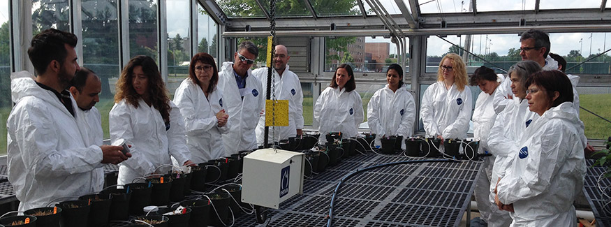 GLOBAL project scientists tour the potato cyst nematode greenhouse research facility at Agriculture and Agri-Food Canada, A GLOBAL partner agency.