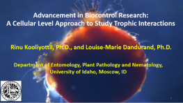 Advancement in Biocontrol Research: A Cellular Level Approach to Study Trophic Interactions