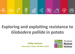 Exploring and exploiting resistance to Globodera pallida in potato.